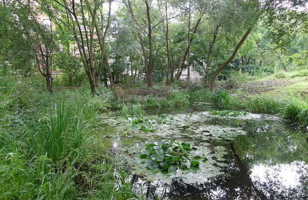 Les jardins insolites de Paris