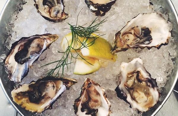 groupon gourmand jacks oyster bar