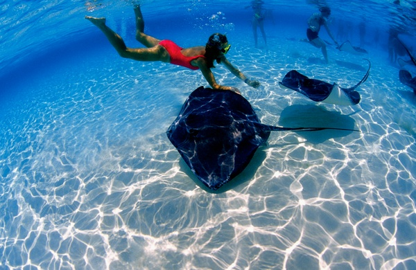 Top Six Places to Snorkel in the Caribbean