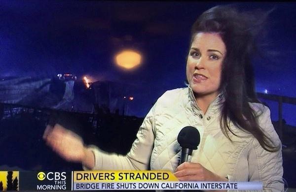 tv reporter inline