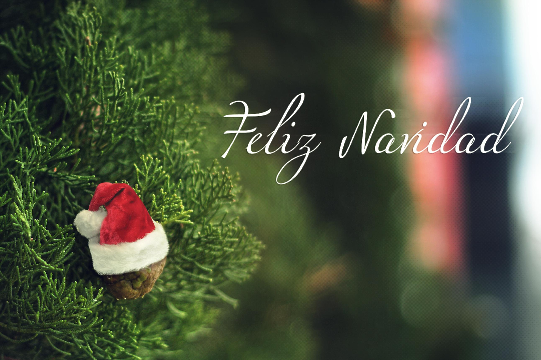 Visitar los museos de Zaragoza en Navidad y Año Nuevo
