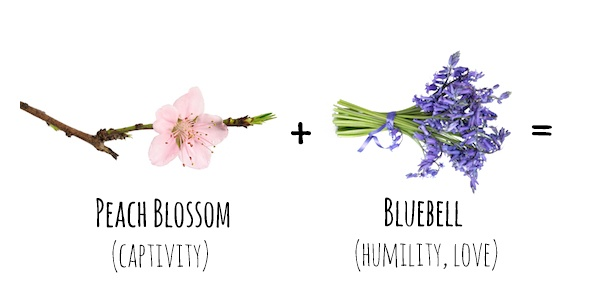 Flower Meanings  Peach Blossom   Bluebell