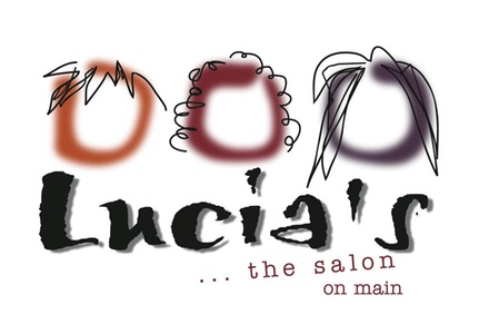 Lucia S The Salon Hudson Oh Groupon