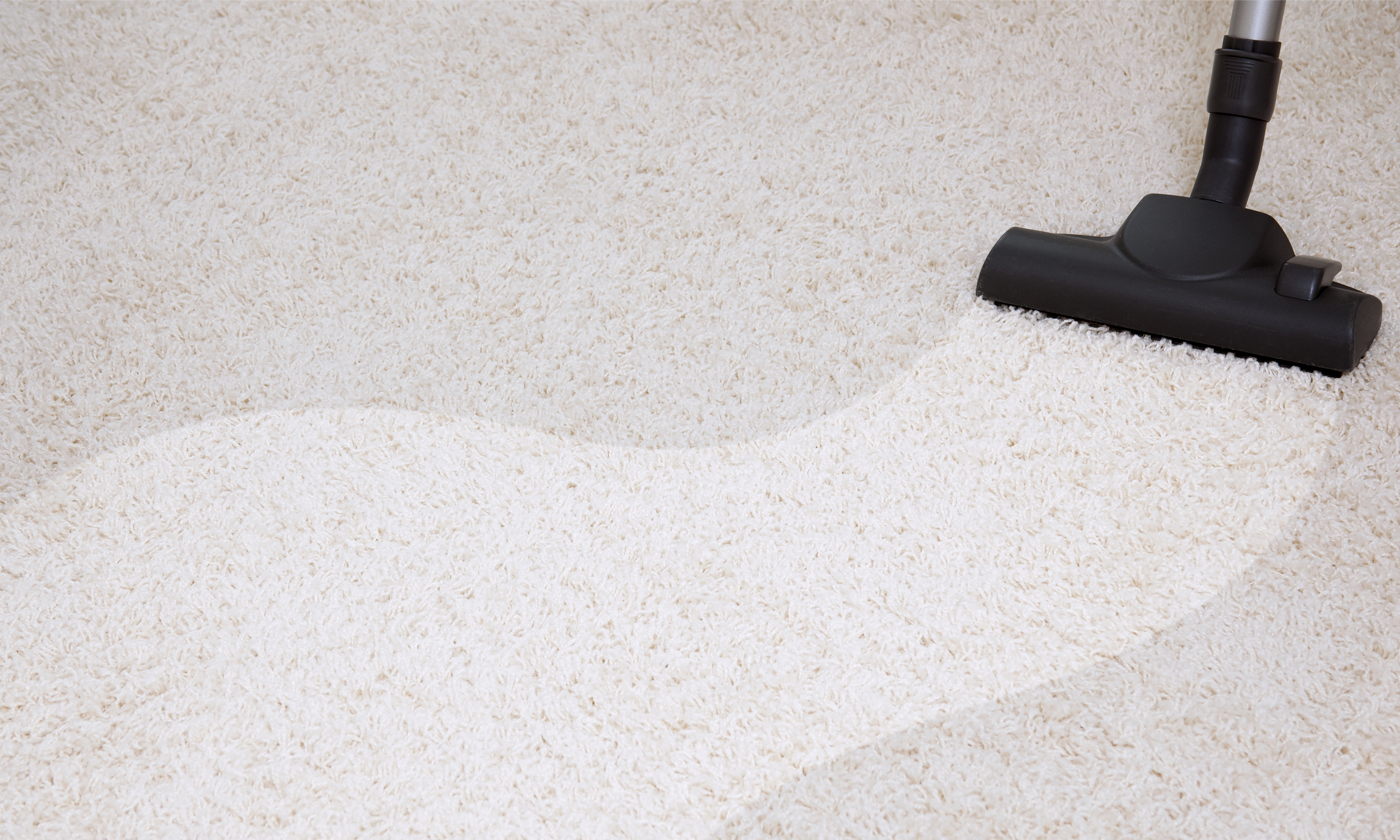 Generation Carpet Cleaning Fort Worth Reviews Home The