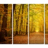 Pathway in Green Autumn Forest - Photo Metal Wall Art