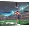 American Football Player Sports Metal Wall Art 28x12