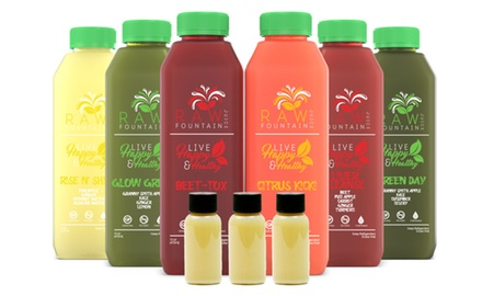 Juice Cleanse Detox - Cold Pressed Fresh by Raw Fountain - 1 3 5 7 Day