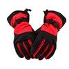 Winter Sportswear Thermal Insulated Adjustable Snowboard / Ski Gloves