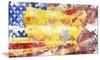 USA Map on Flag' Metal Wall Art 28x12
