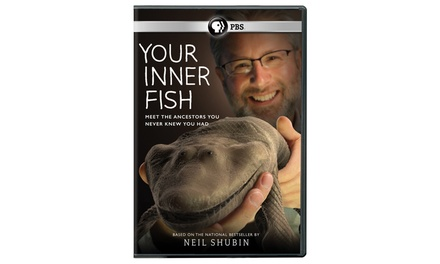 Your inner fish dvd groupon for Your inner fish