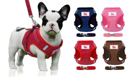 Dog Harness Vest Leash Set Small Dogs Cats Walking Harness