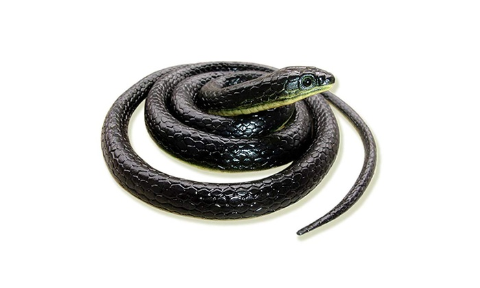 Realistic Fake Rubber Toy Snake Black Fake Snakes 49 Inch Long AprilFool/'s Day