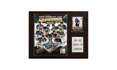"NHL 12""x15"" Pittsburgh Penguins 2009 Stanley Cup Champions Plaque a4e64c5d-dba3-42b6-8e4b-8e186e27b54d"