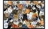 Carolines Treasures Cats Galore Indoor or Outdoor Mat, 24 x 36