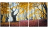Yellow Forest Autumn Trail - Landscape Photo Metal Wall Art