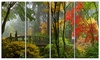 Japanese Wooden Bridge in Fall Photo Metal Wall Art 48x28 4 Panels