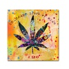 Potman 'Colorado State of Mind' Canvas Art