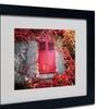 Philippe Sainte-Laudy 'Red Windowpane' Matted Black Framed Art