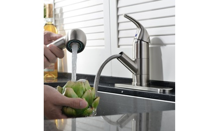 Pull-Out 360 Stainless Steel Swivel Spray Spout Kitchen Faucet w/Mixer Tap