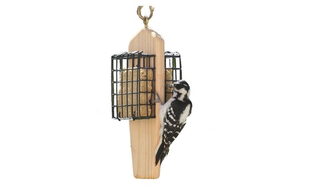 Birds Choice WCDHSUET Double Cake Hanging Suet Feeder (Goods Pet Supplies Bird Supplies) photo