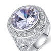 Micro Pave Halo Cubic Zircon Big Stone Ring for Women
