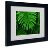Kurt Shaffer 'Healing Ferns' Matted Black Framed Art