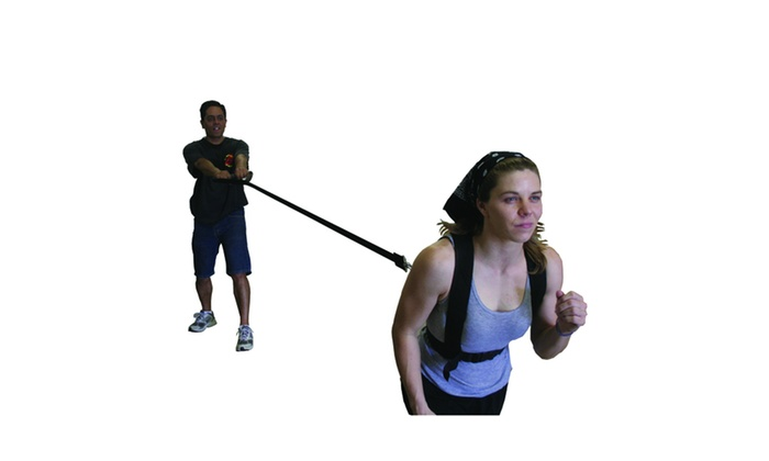 Speed/Agility Training Harness