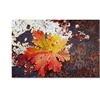 Philippe Sainte-Laudy 'Autumn Rust' Canvas Art