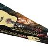 Dean Tradition AK48 Acoustic Guitar Pack - GN w/Gig Bag & Acc
