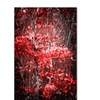 Philippe Sainte-Laudy 'Hope Leaves' Canvas Art