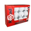 Bridgestone E6 Refinished Grade A Golf Balls