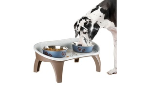 Elevated Non Skid Pet Feeding Tray with Splash Guard  21 x 11 x 8.5 Dogs Cats