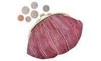 New Waterproof Eel Skin Large Double Coin Change Purse Wallet (Menswallet) photo