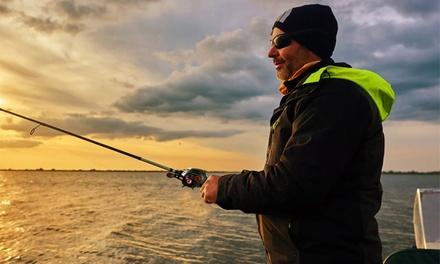 iMounTEK Baitcasting Fishing Reel, Drag Baitcasters, 17.5lbs Max