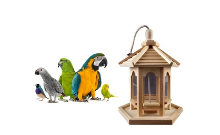 Paint Yourself Bird Feeder Makes a Fun Decoration For Your Home (Goods Pet Supplies Bird Supplies) photo