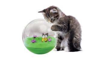 Jackson Galaxy Butterfly in a Ball Toy