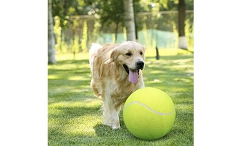 Waloo Pets Giant Tennis Ball for Pets (Pump Included!)