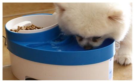 Dual Port Dog Automatic Water Dispenser Feeder, Cat Drinking (4) - 1 Pack f3538c29-8bd8-4c64-99f2-9c2cb7ede6ac