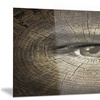 Aging Eyes Abstract Metal Wall Art 28x12