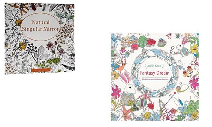 Natural Singular Dream Mirror And Fantasy Adult Coloring Book