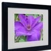 Monica Fleet 'Purple Flower' Matted Black Framed Art