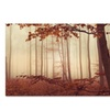 Philippe Sainte-Laudy 'The Last of Fall' Canvas Art