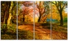 Beauty of Nature - Landscape Glossy Metal Wall Art