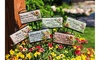Wishgivers Simple Blessings Garden Stakes (6 Set)