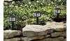 10 Pack New Led Black Lantern Solar Pathway Light