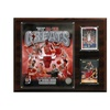 """NBA 12""""x15"""" Chicago Bulls All-time Great Photo Plaque"""
