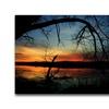 CATeyes Luminous Essence Canvas Print