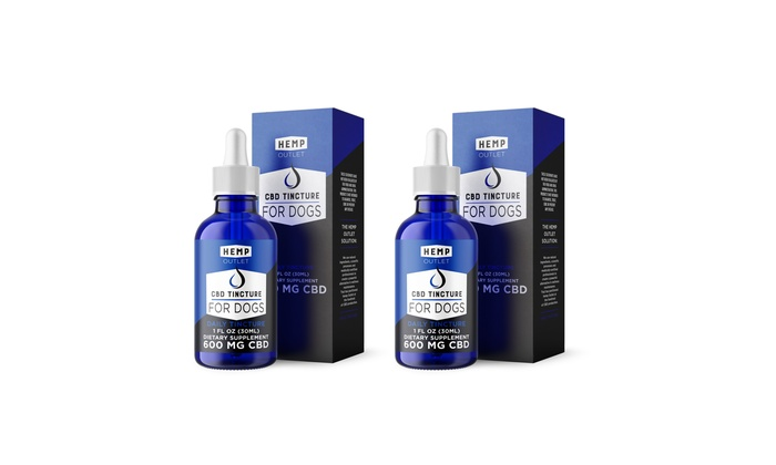 best cbd tincture for dogs
