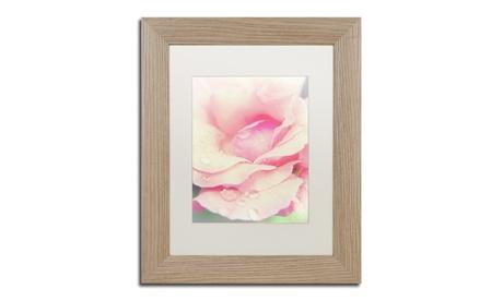 PIPA Fine Art 'Softened Rose' Matted Birch Framed Art 4dd8c88a-7301-4f2e-94a6-64fc220d98a1