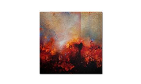 Cody Hooper 'Red Earth' Canvas Art 5bbb5715-07a3-4dde-b76b-cfc1a3eae44a